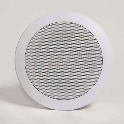 ceiling PA Speaker