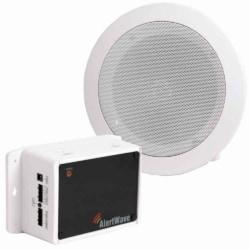 Wall-Mounted Wireless PA Speaker