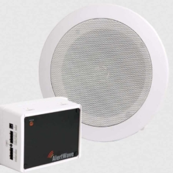 Wireless Ceiling Speaker